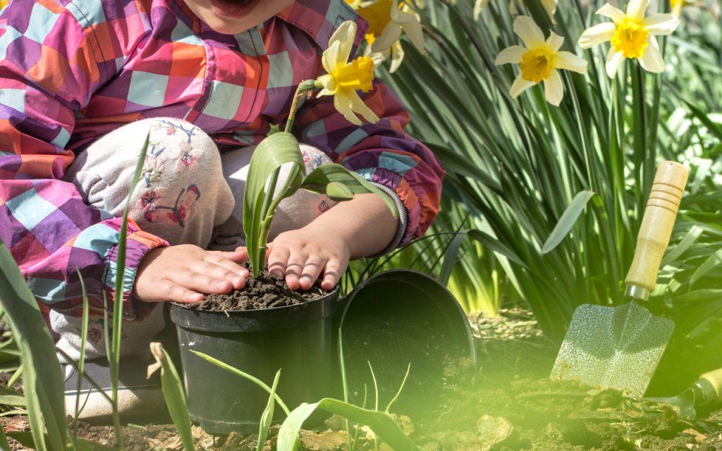 Dziecko sadzi Kwiaty